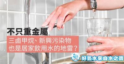 台灣的自來水含有三鹵甲烷